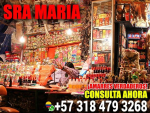 AMARRO SOMETO DOMINO SRA MARIA 3184793268