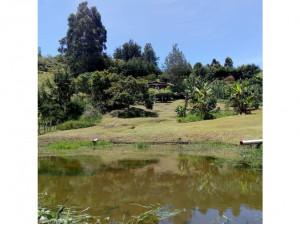 Lote independiente en Marinilla via al Peñol