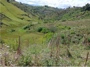 Finca en venta Marinilla Antioquia AS