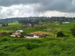 LOTE RURAL SAN PEDRO DE LOS MILAGROS