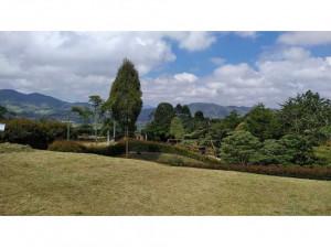 Venta de lote en la Ceja Antioquia
