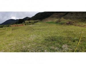 Lote en Venta en la Ceja, vía Abejorral Área 2.500 M2
