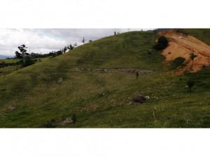 Lote en Venta en la Ceja, vía Abejorral Área 2.527 M2