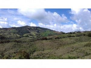 Vendo lote en La Ceja, Antioquia