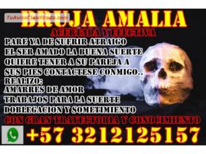 AMALIA AMARRES DE AMOR