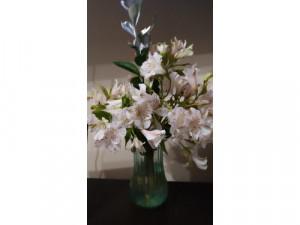 Flores, plantas, detalles y velas aro
