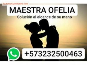 3232500463 MAESTRA OFELIA