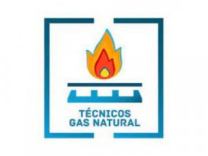 Tecnicos en gasodomesticos expertos en gas natural 3193...