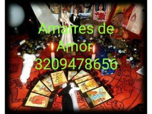 AMARRES DE AMOR-PAGUE AL VER RESULTADO 3209478656