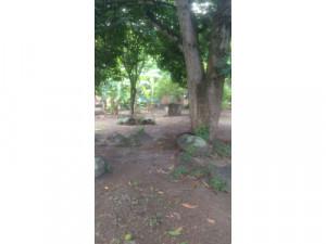 VENTA de casa lote en Piedras Tolima